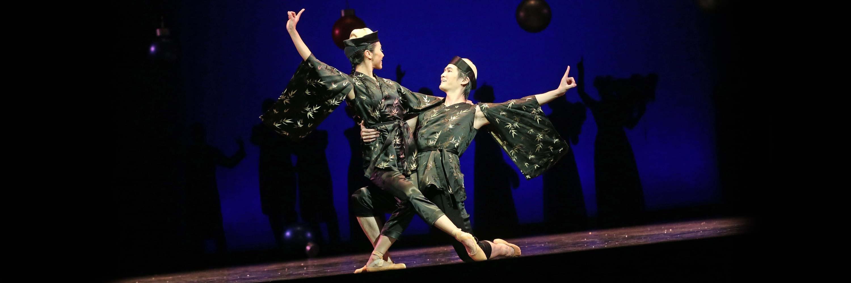 Balletfreunde Coburg Zielsetzung