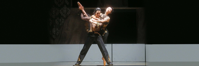 Ballettfreunde-Coburg-Verein-03
